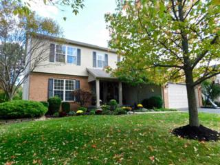 386 Shandon Court, Powell, OH 43065 (MLS #216038241) :: Cutler Real Estate