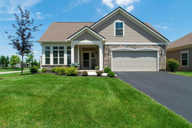 504 Morningstar Place, Powell, OH 43065 (MLS #218024001) :: Signature Real Estate