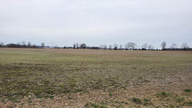 TBD Tbd Marion Bucyrus Roadtract (, Marion, OH 43302 (MLS #10055306) :: Core Ohio Realty Advisors