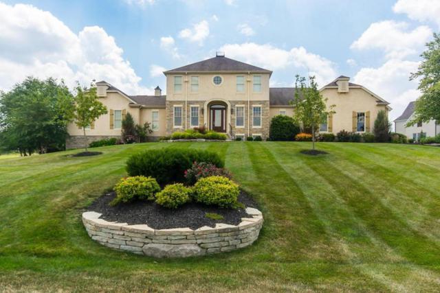 1701 Woodland Hall Drive, Delaware, OH 43015 (MLS #217003219) :: Susanne Casey & Associates