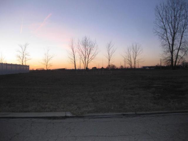 175 Hathaway Road, West Jefferson, OH 43162 (MLS #217004588) :: Signature Real Estate
