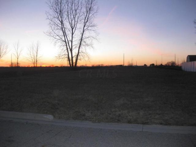 191 Hathaway Road, West Jefferson, OH 43162 (MLS #217004592) :: Signature Real Estate