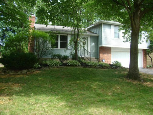 798 N Stygler Road, Gahanna, OH 43230 (MLS #217020690) :: RE/MAX ONE
