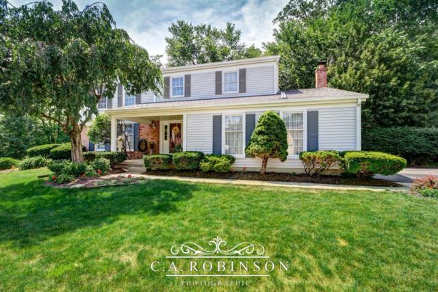 487 Sutterton Drive, Gahanna, OH 43230 (MLS #217020843) :: Cutler Real Estate