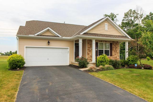 544 Saffron Drive, Sunbury, OH 43074 (MLS #217020852) :: Cutler Real Estate
