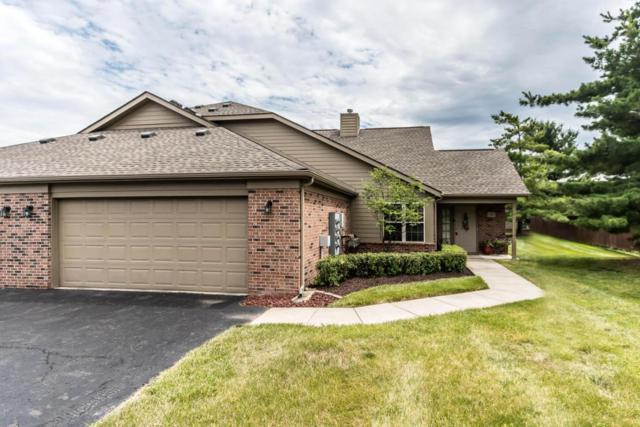 1387 Underwood Farms Boulevard, Gahanna, OH 43230 (MLS #217021028) :: The Columbus Home Team