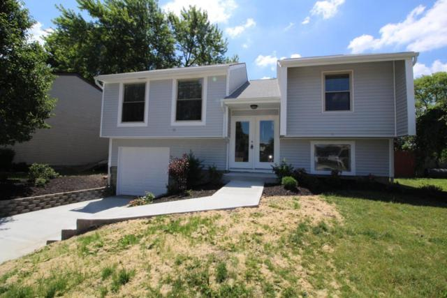 5959 Parkglen Road, Galloway, OH 43119 (MLS #217021834) :: Signature Real Estate