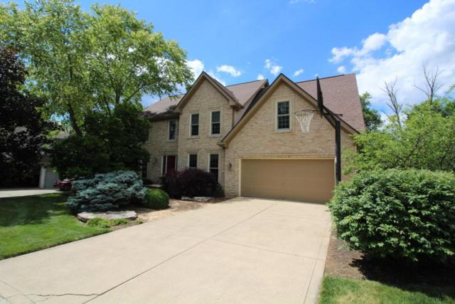 960 Valleyview Court, Westerville, OH 43081 (MLS #217021847) :: Cutler Real Estate