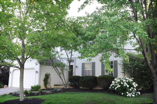 134 Brookhill Drive, Columbus, OH 43230 (MLS #217021879) :: Cutler Real Estate
