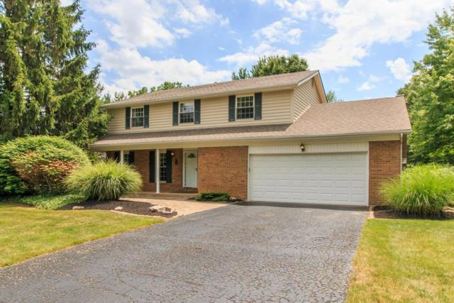 8917 Indian Mound Road NW, Pickerington, OH 43147 (MLS #217021937) :: Signature Real Estate