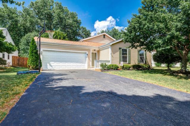 1780 Bierstad Drive, Powell, OH 43065 (MLS #217022175) :: Signature Real Estate