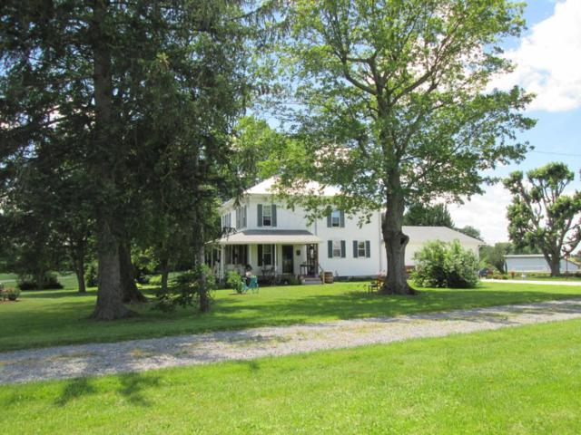 4445 State Route 309, Galion, OH 44833 (MLS #217022320) :: Core Ohio Realty Advisors