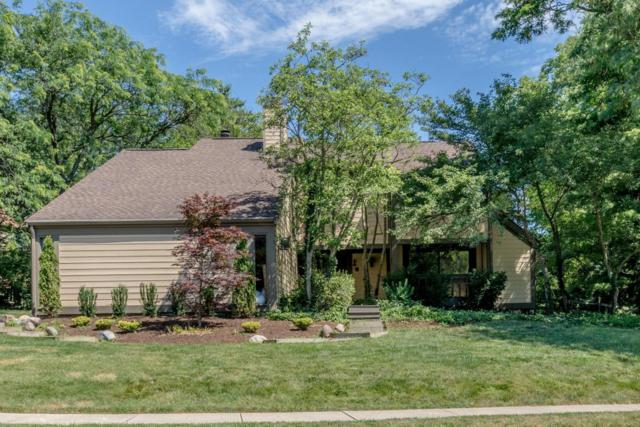 176 Waterford Drive, Dublin, OH 43017 (MLS #217022354) :: Casey & Associates Real Estate