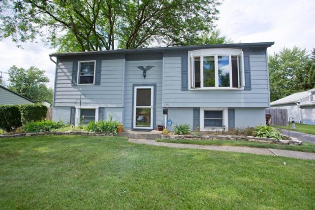 3636 Manila Drive, Westerville, OH 43081 (MLS #217022674) :: The Columbus Home Team