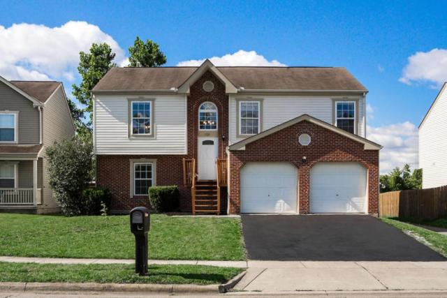 1929 Arden Forest Lane, Columbus, OH 43223 (MLS #217022711) :: RE/MAX ONE