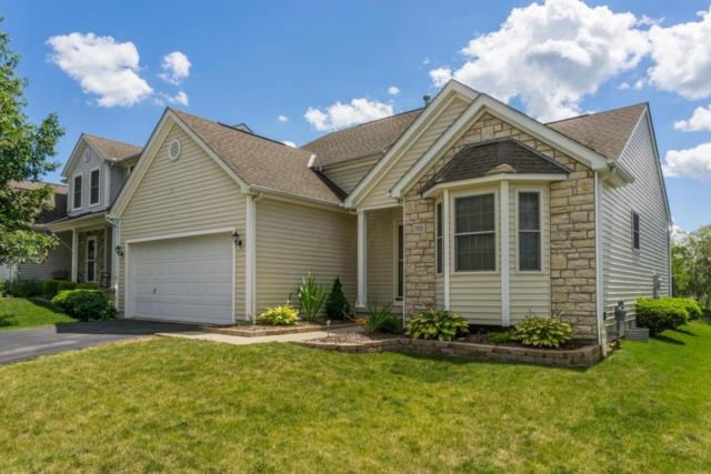 753 Salinger Drive, Lithopolis, OH 43136 (MLS #217022847) :: Kim Kovacs and Partners
