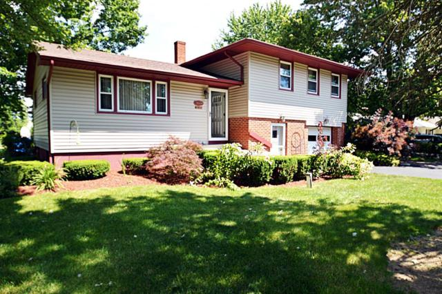 8564 Frazier Drive, Plain City, OH 43064 (MLS #217023770) :: Berkshire Hathaway Home Services Crager Tobin Real Estate