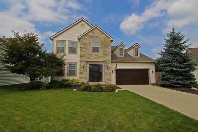 5603 Connorwill Drive, Westerville, OH 43081 (MLS #217025709) :: Core Ohio Realty Advisors