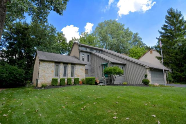 1108 Forest Glen Road, Westerville, OH 43081 (MLS #217025873) :: Core Ohio Realty Advisors