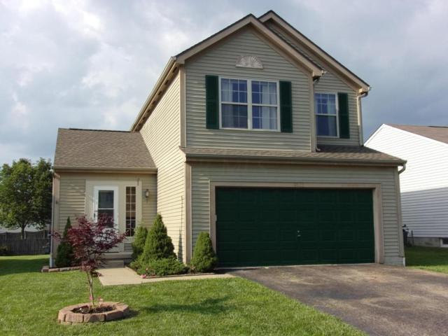 8522 Old Ivory Way, Blacklick, OH 43004 (MLS #217026176) :: Core Ohio Realty Advisors