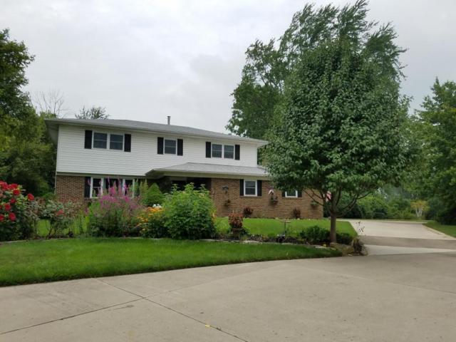 8411 Evangeline Drive, Columbus, OH 43235 (MLS #217026434) :: Core Ohio Realty Advisors