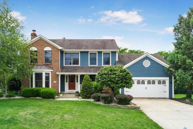 3020 Atoll Drive, Lewis Center, OH 43035 (MLS #217026476) :: Core Ohio Realty Advisors