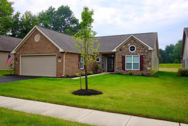 5815 Parchment Drive, Westerville, OH 43081 (MLS #217026534) :: Berkshire Hathaway Home Services Crager Tobin Real Estate