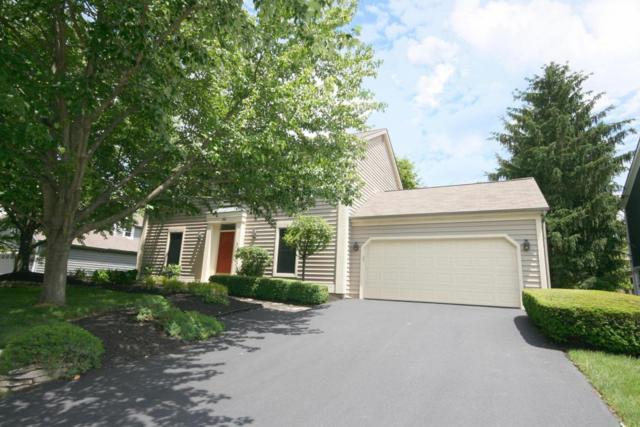 898 Dark Star Avenue, Gahanna, OH 43230 (MLS #217026882) :: Core Ohio Realty Advisors