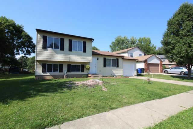 1784 Gallo Drive, Powell, OH 43065 (MLS #217027005) :: Core Ohio Realty Advisors