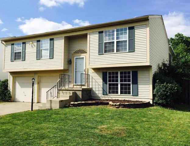 3576 High Creek Drive, Columbus, OH 43223 (MLS #217027017) :: Core Ohio Realty Advisors