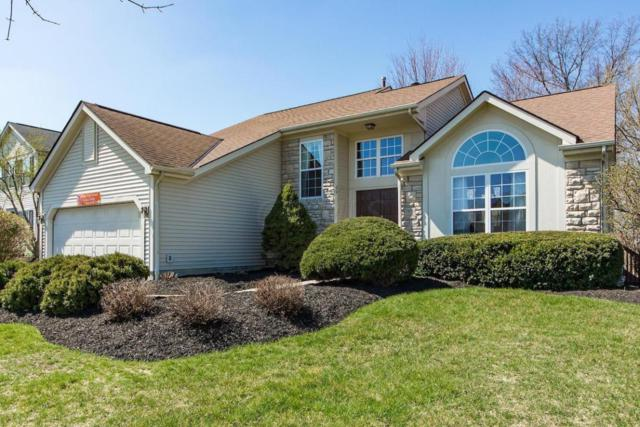 7850 Manorgate Street, Lewis Center, OH 43035 (MLS #217027249) :: The Barker Team