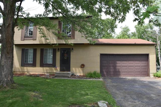 3984 Three Rivers Lane, Groveport, OH 43125 (MLS #217027639) :: RE/MAX ONE