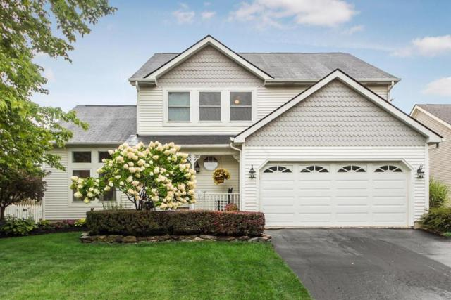 1480 Deer Crossing Lane, Worthington, OH 43085 (MLS #217029200) :: The Columbus Home Team