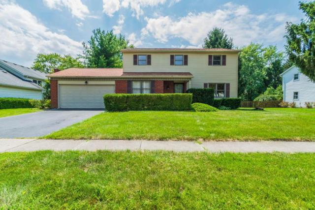 6619 Fusilier Avenue, Reynoldsburg, OH 43068 (MLS #217029512) :: Signature Real Estate
