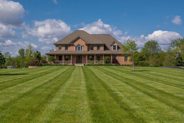 9051 Oak Ridge Lane, Plain City, OH 43064 (MLS #217029726) :: Signature Real Estate