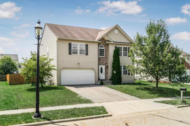 5077 Shellbark Court, Groveport, OH 43125 (MLS #217029730) :: RE/MAX ONE