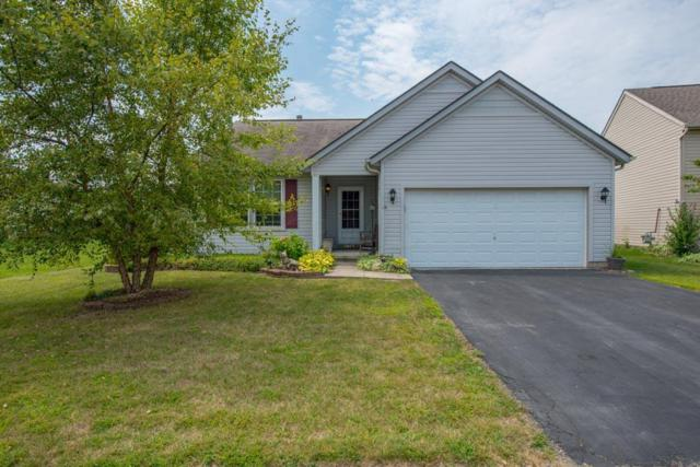 5449 Hillbrook Drive, Galloway, OH 43119 (MLS #217029833) :: Signature Real Estate