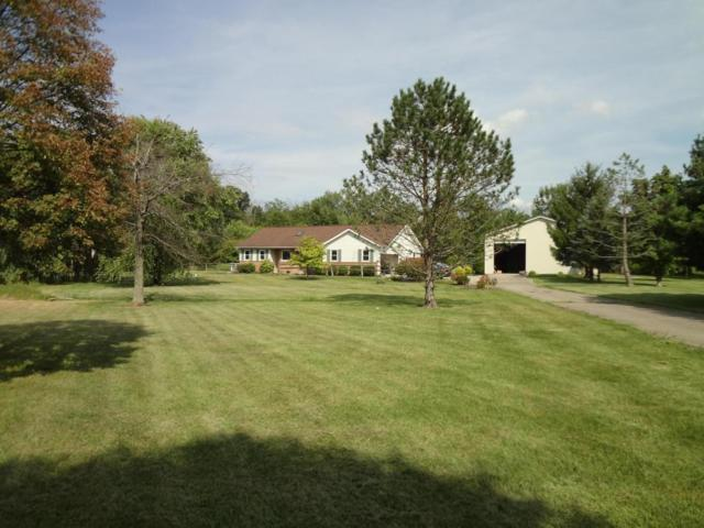 4200 Mink Street, Johnstown, OH 43031 (MLS #217029964) :: The Clark Realty Group @ ERA Real Solutions Realty