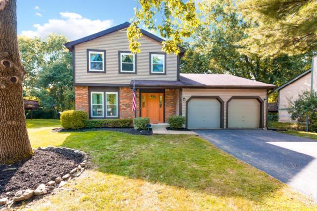 6319 Amston Drive, Dublin, OH 43017 (MLS #217030120) :: Casey & Associates Real Estate