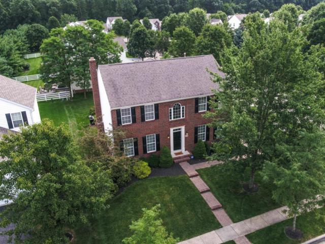 1310 Havant Drive, New Albany, OH 43054 (MLS #217030140) :: RE/MAX ONE