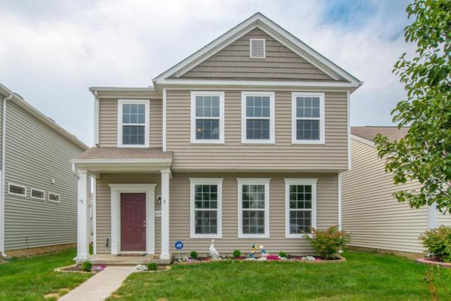 6193 Broad Stripes Avenue, Galloway, OH 43119 (MLS #217030141) :: Signature Real Estate