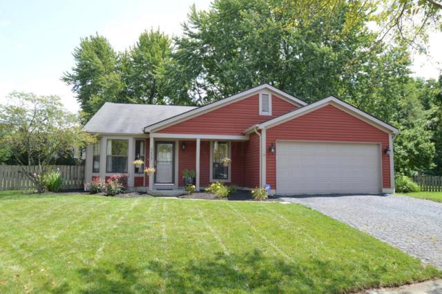 353 Greenwold Court, Columbus, OH 43235 (MLS #217030191) :: Casey & Associates Real Estate