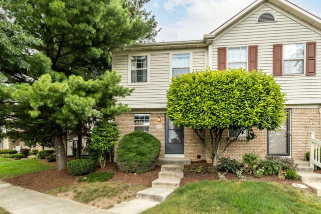 216 Charring Cross Drive S, Westerville, OH 43081 (MLS #217030194) :: The Columbus Home Team