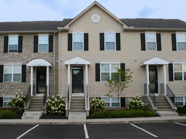 247 Oxford Oak Drive #247, Blacklick, OH 43004 (MLS #217030218) :: Core Ohio Realty Advisors