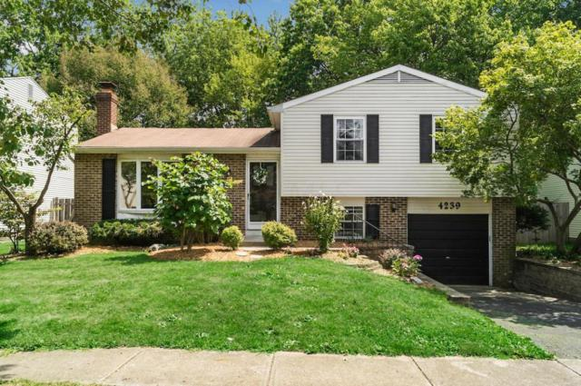 4239 Bitterroot Drive, Westerville, OH 43081 (MLS #217030226) :: Core Ohio Realty Advisors