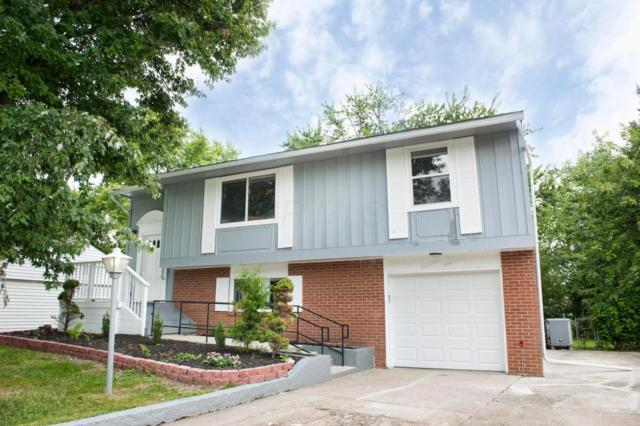2597 Caralee Place, Columbus, OH 43219 (MLS #217030268) :: Core Ohio Realty Advisors