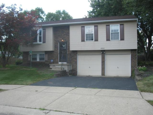 1843 Calico Court, Powell, OH 43065 (MLS #217030479) :: RE/MAX ONE