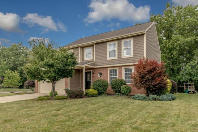 932 Bovee Lane, Powell, OH 43065 (MLS #217030489) :: Cutler Real Estate