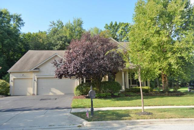 6783 Burnside Lane, Dublin, OH 43016 (MLS #217030527) :: Cutler Real Estate