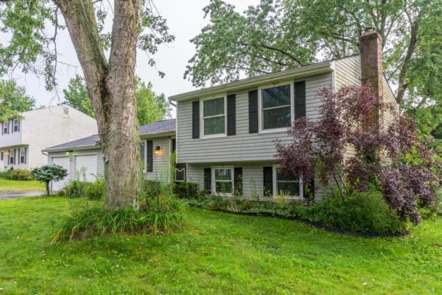 453 Morningview Avenue, Pickerington, OH 43147 (MLS #217030644) :: Cutler Real Estate
